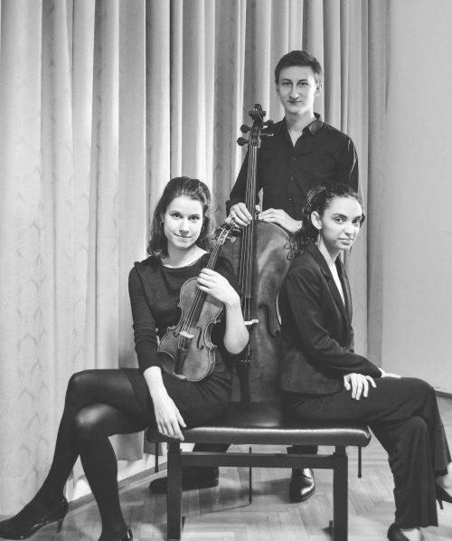 Junge Talente - MDW Schubertensemble