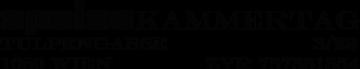 Logo SPEISEKAMMERTAG - Verein zur Förderung digitaler Kunst und Kultur