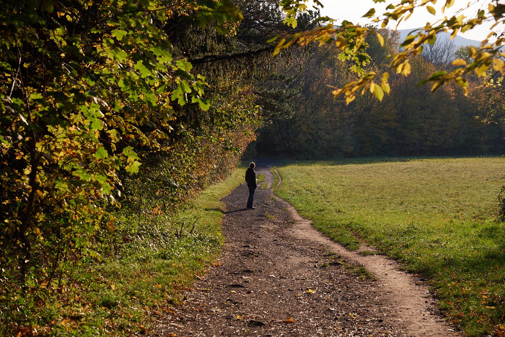Singen im Herbst